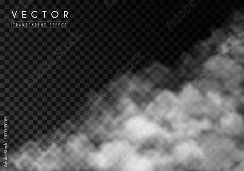 Fototapeta White thick smoke, smog or fog