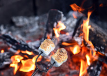 Roasting Marshmallows Over Hot...