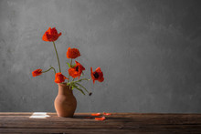 Red Poppy In Jug On Dark Backg...