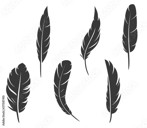 Fototapeta Set of hand drawn feathers different shapes in minimalistic monochrome cartoon style