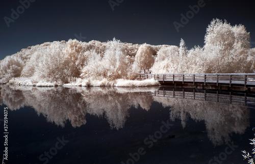 Foto sommerlich