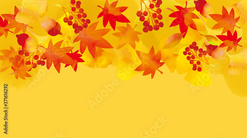 秋の紅葉の背景素材 Wallpaper Mural