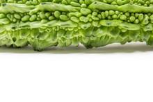 Zucca Amara, Vegetale Medicinale