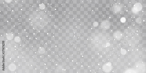 Obraz Vector heavy snowfall, snowflakes in different shapes and forms. Snow flakes, snow background. Falling Christmas - fototapety do salonu
