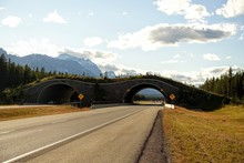 A Photo Of A Wildife Crossing Or Bridge, An Overpass Over A Highway Outside Of Banff, Alberta, Canada.
