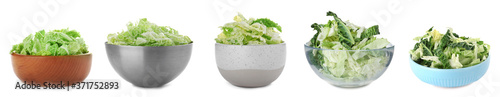 Photographie Set of bowls with shredded Savoy cabbage on white background