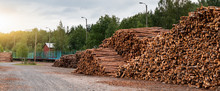 Stock Of Timber. Timber Indust...