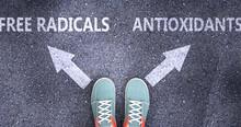 Free Radicals And Antioxidants...