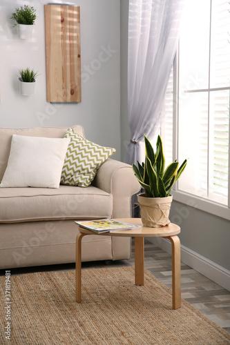 Vászonkép Modern living room interior with stylish comfortable sofa