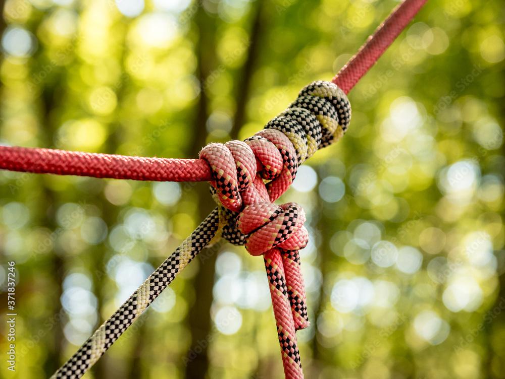 Fototapeta Detail of rope park in a forest. Adventure summer park.