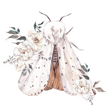 Watercolor Illustration With M...