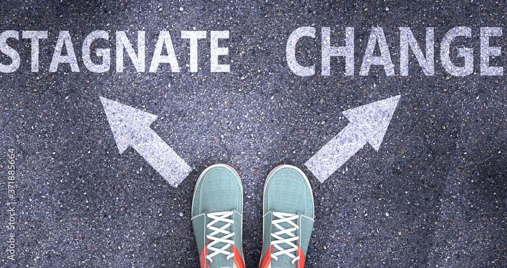 Fototapeta Stagnate and change as different choices in life - pictured as words Stagnate, change on a road to symbolize making decision and picking either Stagnate or change as an option, 3d illustration