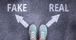 Fake and real as different choices in life - pictured as words Fake, real on a road to symbolize making decision and picking either Fake or real as an option, 3d illustration