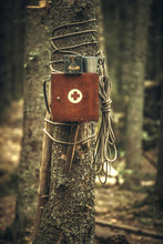An Old Wooden First Aid Kit With A Red Cross Attached To A Tree In The Forest.