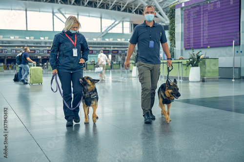 Security workers with detection dogs walking in airport terminal Canvas