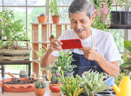 Active  Asian elderly male gardener sitting  in plant shop indoor,wearing  bib taking photo of his plant by mobile phone and smiling happily Canvas Print