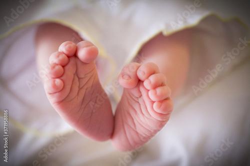 Pieds de bébé, frippés Fototapet