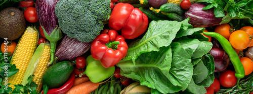Obraz na plátně Fresh organic vegetable