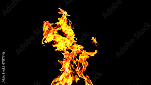 Fire flames on black background isolated Canvas Print