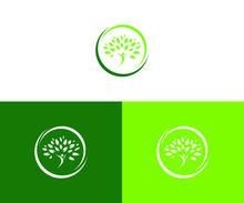 Tree Logo Design Vector Format