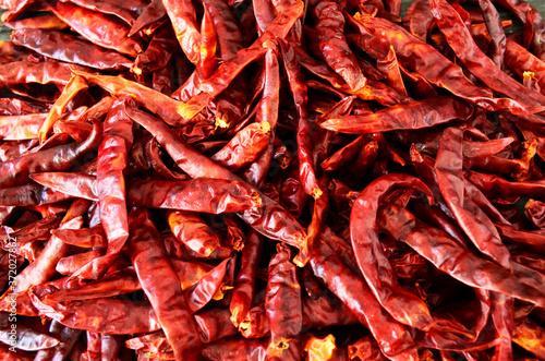 Fotomural chile de árbol seco para salsa, comida mexicana, chile de árbol, chiles secos, c