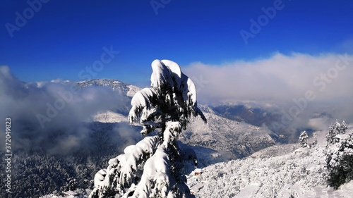 Fotografering snow covered mountains