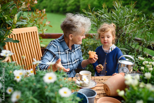 Senior grandmother with small granddaughter gardening on balcony in summer, eating Canvas-taulu