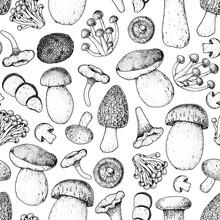 Mushrooms Seamless Pattern. Ha...