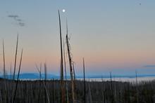 Moon Setting Over Yellowstone ...
