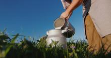 The Milkman Pours Milk Into Th...