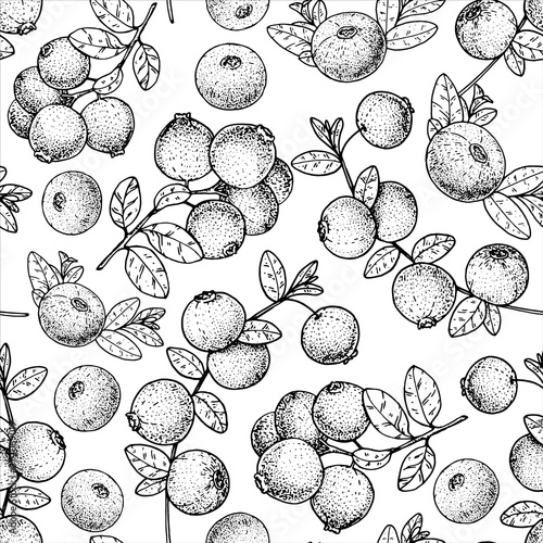 Foto Seamless pattern with cranberry