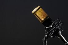 Micrófono Profesional De Sobr...