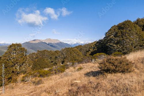 Photo Saint Arnaud range in Nelson Lakes National Park in New Zealand with blue sky an