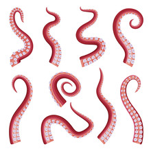 Octopus Tentacles Collection, ...