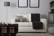 Modern comfortable sofa in stylish living room interior