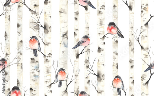 Birch trees with bullfinches birds on branches, watercolor seamless pattern Fototapet