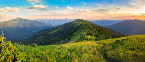 Beautiful summer landscape in the mountains. Sunset Poster Mural XXL