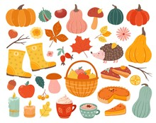 Cute Autumn Elements. Fall Pumpkin, Hedgehog November Forest Leaves. Thanksgiving And Harvest Season, Cozy Decoration Vector Illustration. Autumn Pumpkin Forest, Collection Of Mushroom