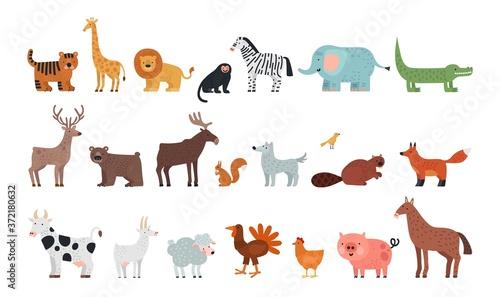 Different animals Fototapete
