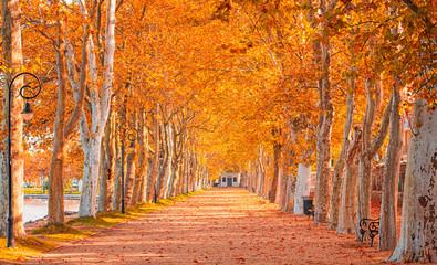 Pathway at lake Balaton in autumn