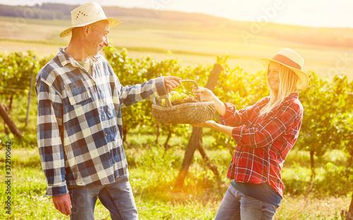Foto Paar im Weinberg mit Korb für Picknick im Sommer