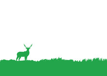 Simple Flat Background With Deer Silhouette Standing In Grass. Wild Animal Illustration For National Park, Reserve Or Sanctuary In Vector