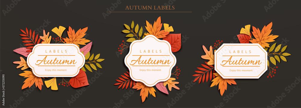 Fototapeta Autumn foliage label design