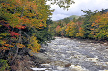 Autumn In White Mountains Of New Hampshire. Swift-flowing Pemigewasset River With Rapids, Distant Mountain, And Colorful Fall Foliage Along Riverbank.