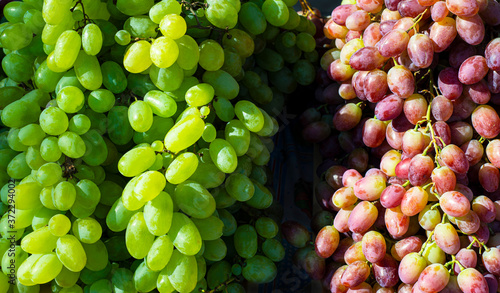 Background from red and green grapes. Fruit season. South Bazaar. Fototapete