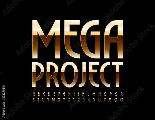 Vector premium banner Mega Project Canvas Print