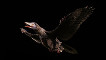 Archaeopteryx, Species That Is...