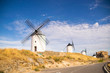 Photo of some beautiful and historic windmills located in Consuegra, Toledo, Spain during a sunny day of summer in a natural place.