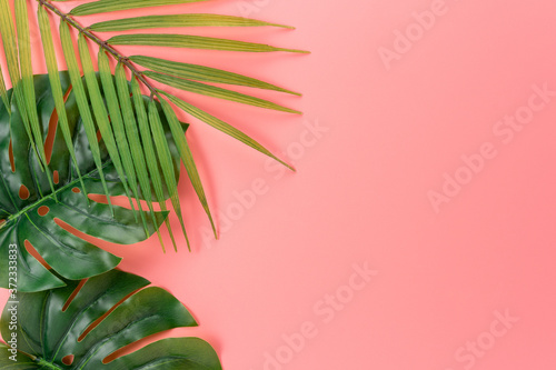 Palm tree leaves on pink background. Creative minimal summer concept.