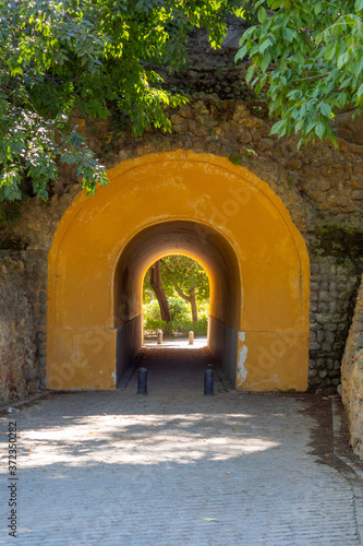 Fotografie, Obraz Tunel en  sevilla parque maria luisa